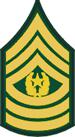 Army-Csm